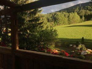Die letzten Sonnenstrahlen zeihen über die Wiesen. Eine Stimmung die man genießen muss.